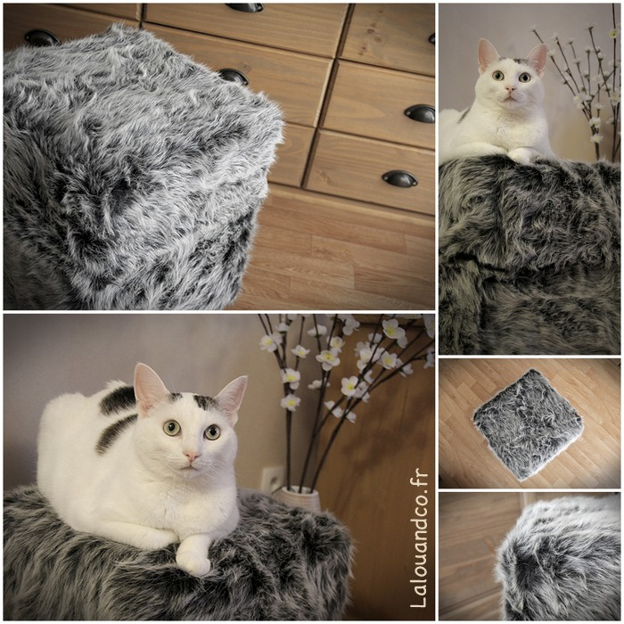✂ ✂ ✂ Le pouf de Monsieur Chat revisité