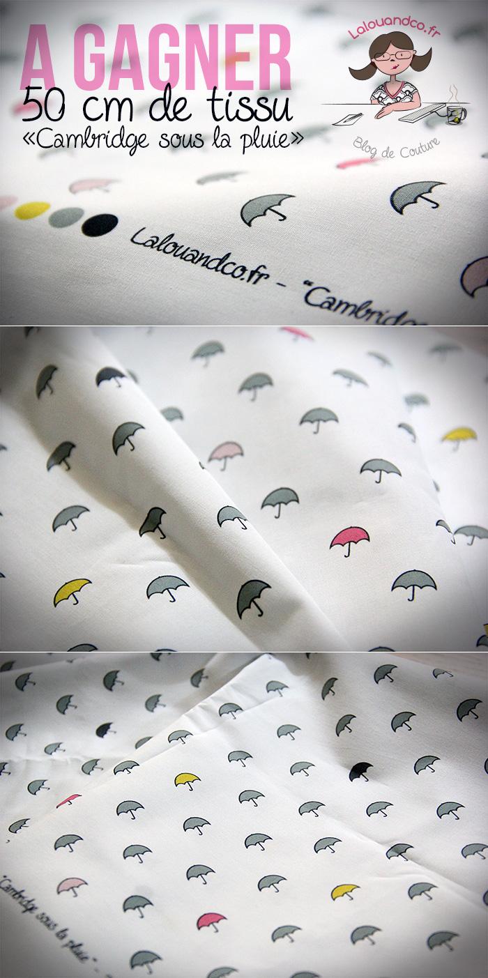 Gagnez le tissu «Cambridge sous la pluie» [concours]…+ EDIT