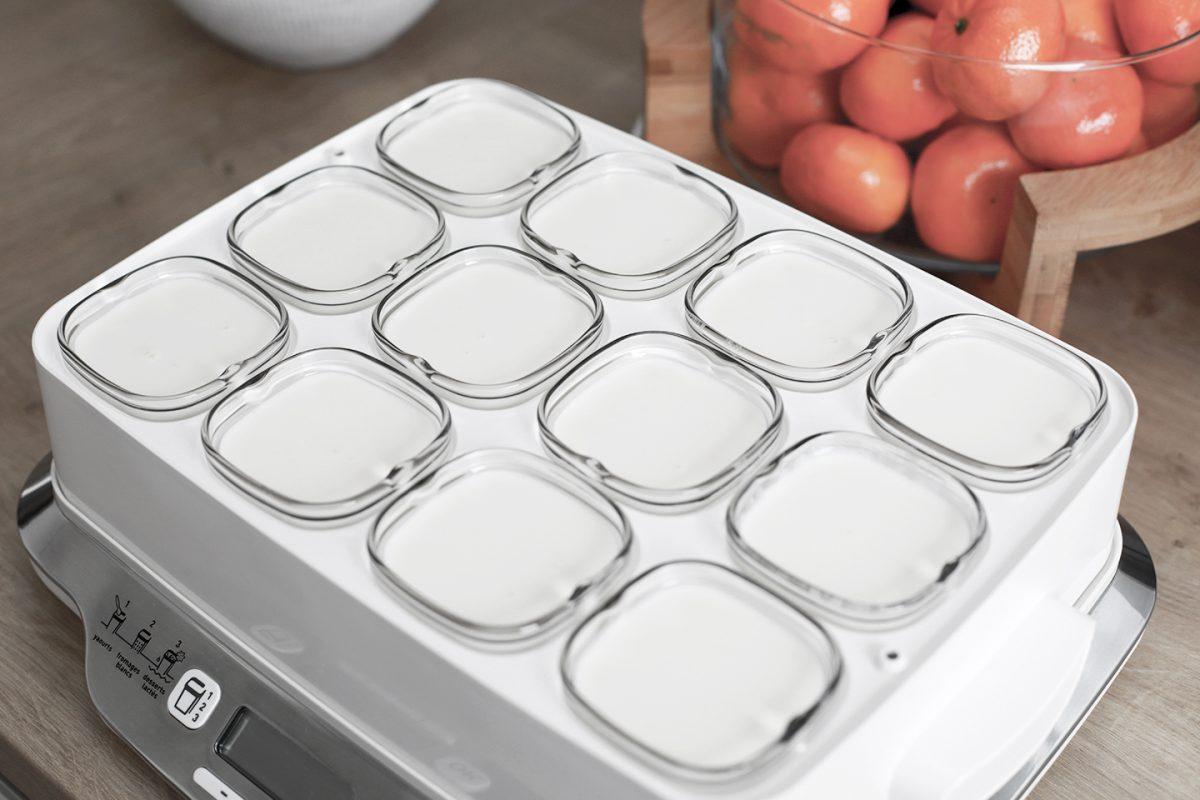 La yaourtière Multidélices de SEB [test produit]