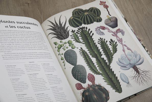 Botanicum, un livre pour les amoureux des plantes