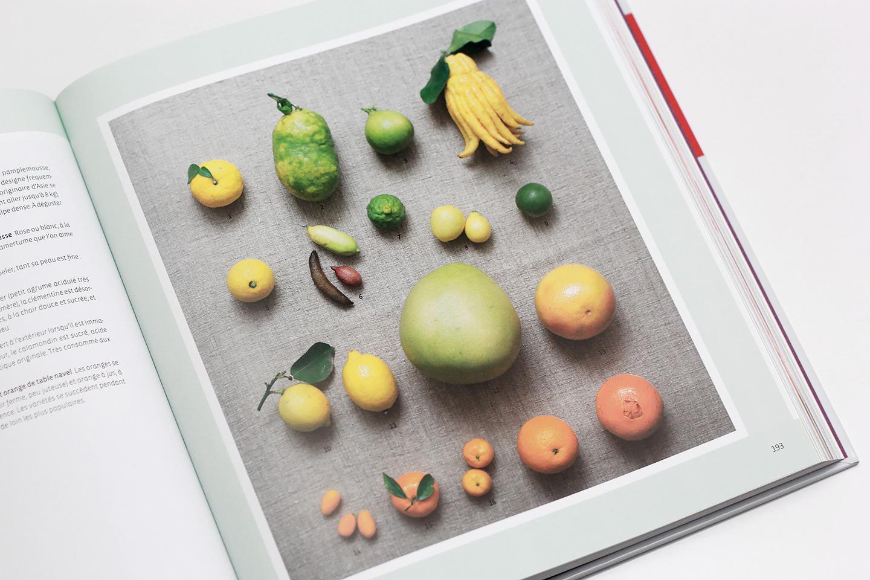 Encyclopedie De La Cuisine Vegetarienne Lalouandco