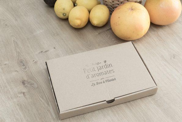 Petit jardin d'aromates par La Box à planter [graines biologiques]